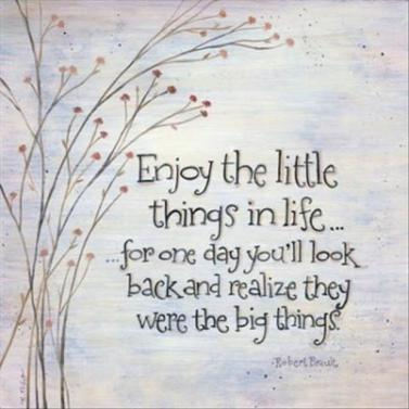 enjoy-the-little-things-quotes